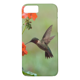 Hummingbird And Flowers iPhone 7 Case