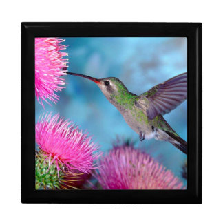 Hummingbird and Flowers/Keep Sake/Gift Box