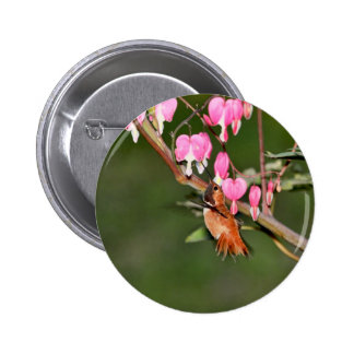 Hummingbird and Flowers Picture Button