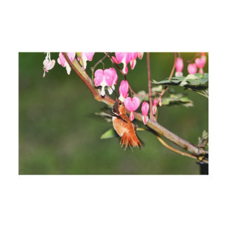 Hummingbird and Flowers Picture Canvas Print