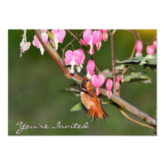 Hummingbird and Flowers Picture Card