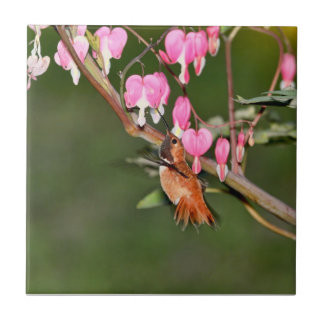 Hummingbird and Flowers Picture Ceramic Tile
