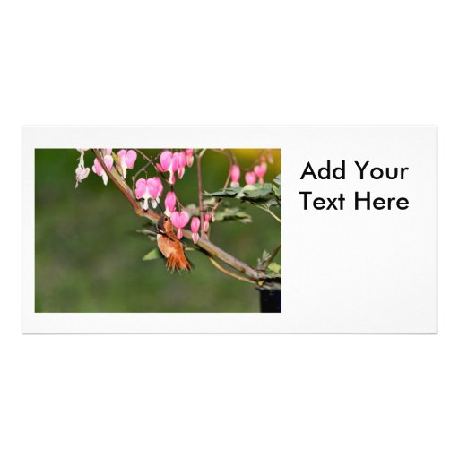 Hummingbird and Flowers Picture Custom Photo Card