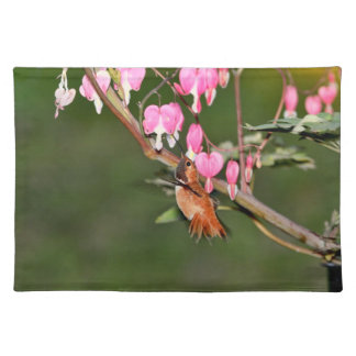 Hummingbird and Flowers Picture Placemat
