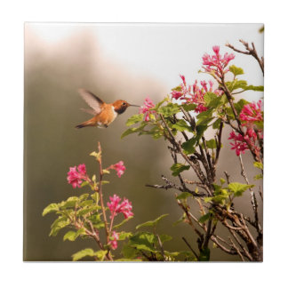 Hummingbird and Flowers Tile