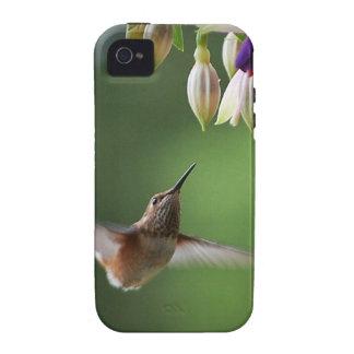 Hummingbird and Fushia Plant iPhone 4/4S Cover