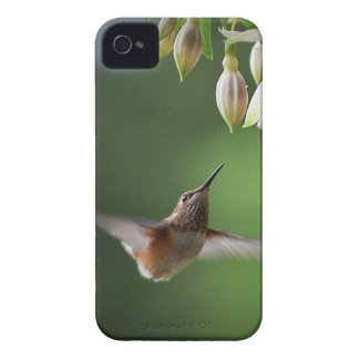 Hummingbird and Fushia Plant iPhone 4 Case-Mate Case