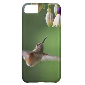 Hummingbird and Fushia Plant iPhone 5C Covers