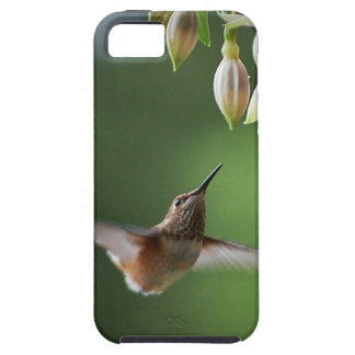 Hummingbird and Fushia Plant iPhone SE/5/5s Case