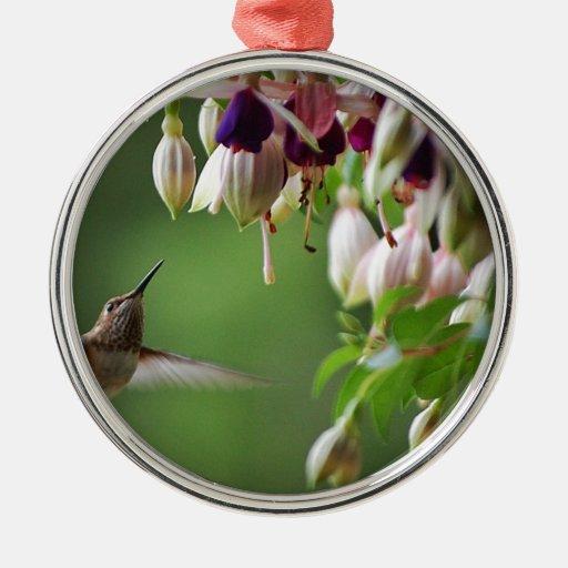Hummingbird and Fushia Plant Round Metal Christmas Ornament