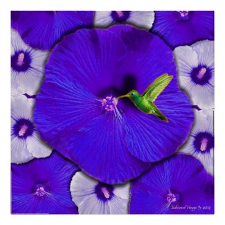 Hummingbird and Lavender Hibiscus Poster zazzle_print