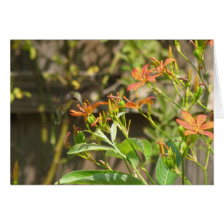 Hummingbird and Lilies Card