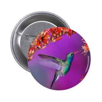 Hummingbird And Orange Flowers Button