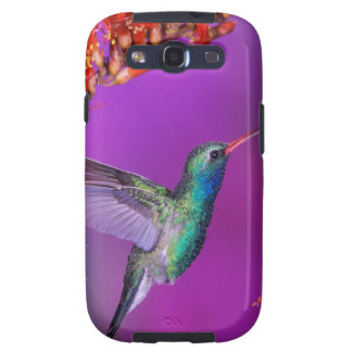 Hummingbird And Orange Flowers Samsung Galaxy SIII Cases