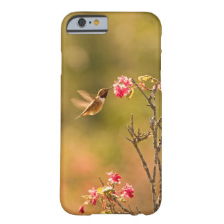 Hummingbird and Pink Flowers Barely There iPhone 6 Case