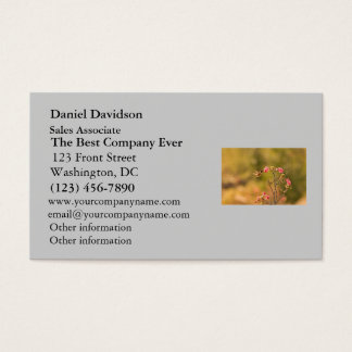 Hummingbird and Pink Flowers Business Card