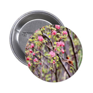 Hummingbird and Pink Flowers Pins