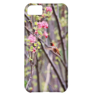 Hummingbird and Pink Flowers Cover For iPhone 5C