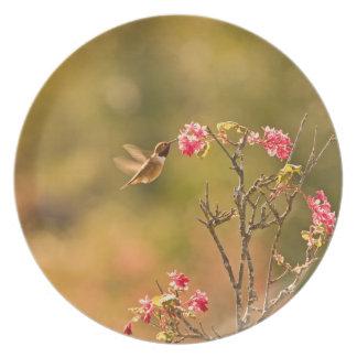 Hummingbird and Pink Flowers Dinner Plate
