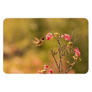 Hummingbird and Pink Flowers Flexible Magnet