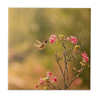 Hummingbird and Pink Flowers Small Square Tile