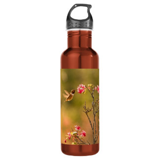 Hummingbird and Pink Flowers Water Bottle