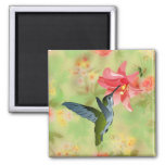 Hummingbird and Pink Lily on Floral Pattern Magnets