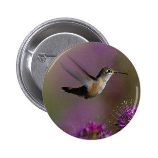 Hummingbird And Purple Flowers Pins