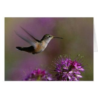 Hummingbird And Purple Flowers Card
