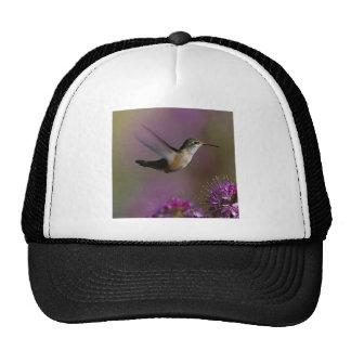 Hummingbird And Purple Flowers Hat