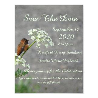 "Hummingbird and Queen Ann's Lace flower 4.25"" X 5.5"" Invitation Card"