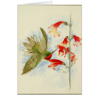 Hummingbird and Red Blossoms Greeting Card