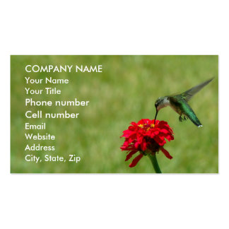Hummingbird and Red Zinnia Double-Sided Standard Business Cards (Pack Of 100)
