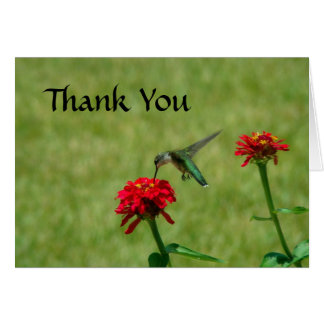 Hummingbird and Red Zinnias Stationery Note Card