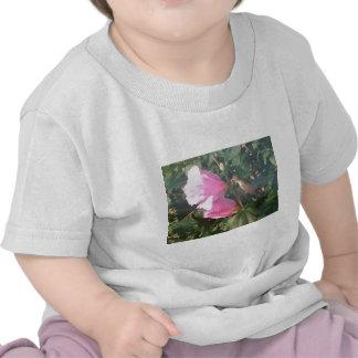 Hummingbird and Rose of Sharon Tee Shirt