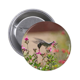 Hummingbird And Snapdragons Pinback Button