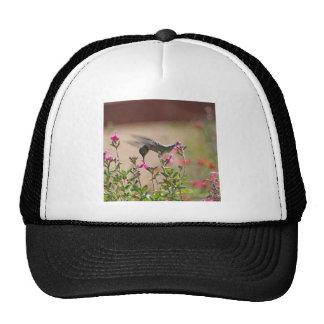 Hummingbird And Snapdragons Hats
