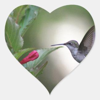 Hummingbird and weigela heart sticker