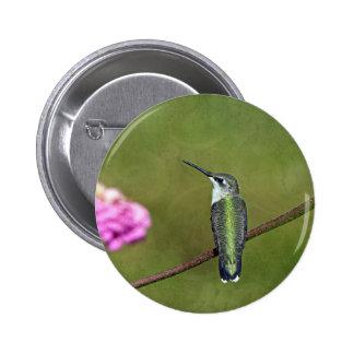 Hummingbird and Zinnia Pinback Button