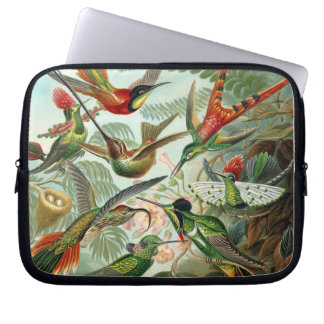 Hummingbird Antique Print Laptop Sleeve