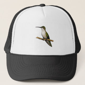 HUMMINGBIRD: Art: Mixed Media: Wildlife Trucker Hat