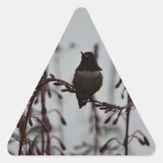 Hummingbird at rest triangle sticker