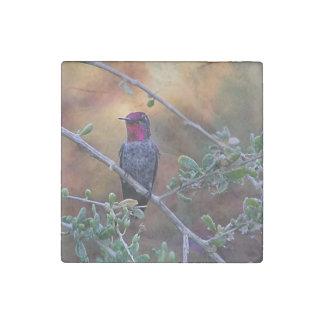 Hummingbird at sunset stone magnet