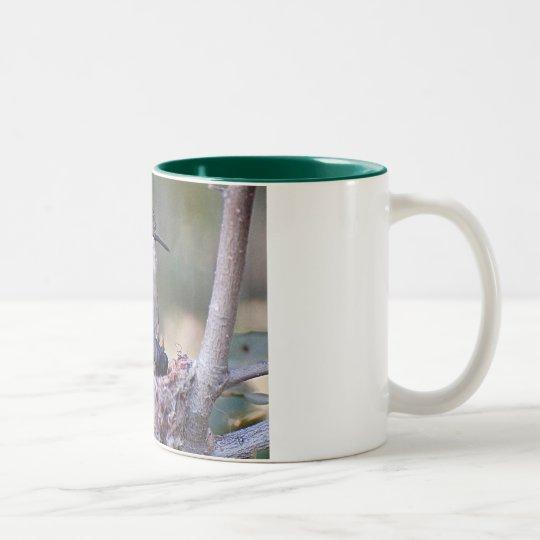 Hummingbird Babies 2 Two-Tone Coffee Mug