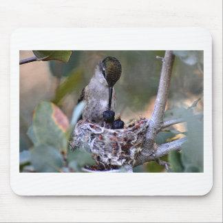 Hummingbird Babies Mouse Pad