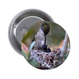 Hummingbird Babies Pinback Button