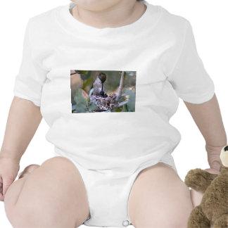 Hummingbird Babies Tee Shirts