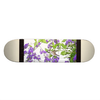 Hummingbird Bird Animal Wildlife Floral Skateboard