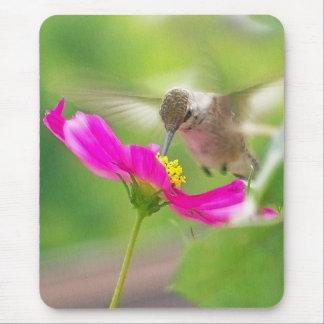 Hummingbird Bird Daisy Flower Floral Garden Mouse Pad