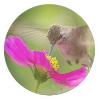 Hummingbird Bird Floral Animal Wildlife Flower Dinner Plate